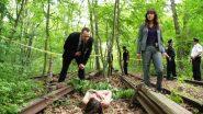 Image dci-banks-13036-episode-6-season-5.jpg