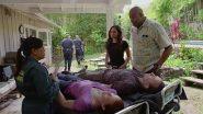Image shameless-27590-episode-9-season-7.jpg